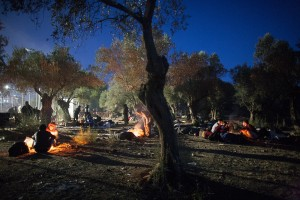 Refugees sleep in the olive field nearby / copyright: Salinia Stroux